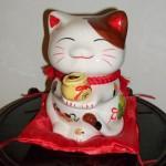 seow-mi-meow1